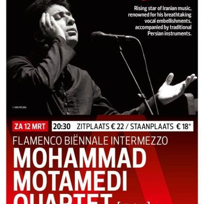 Mohammad Motamedi Quartet-NETHERLANDS-2016